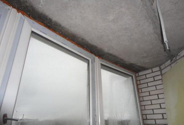 Грибок на потолке лоджии как избавиться