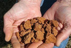 Какой фундамент лучше для глинистой почвы